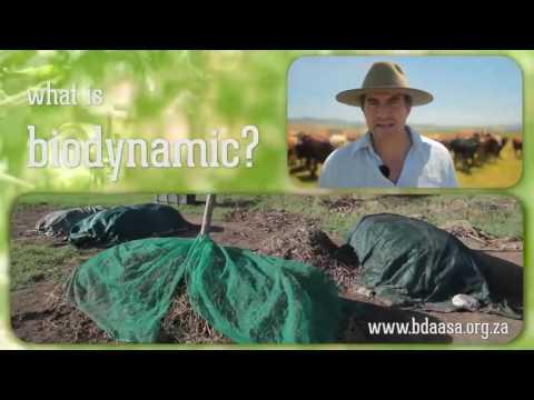 Biodynamic training in South Africa - BDAASA - email training@bdaasa.org.za