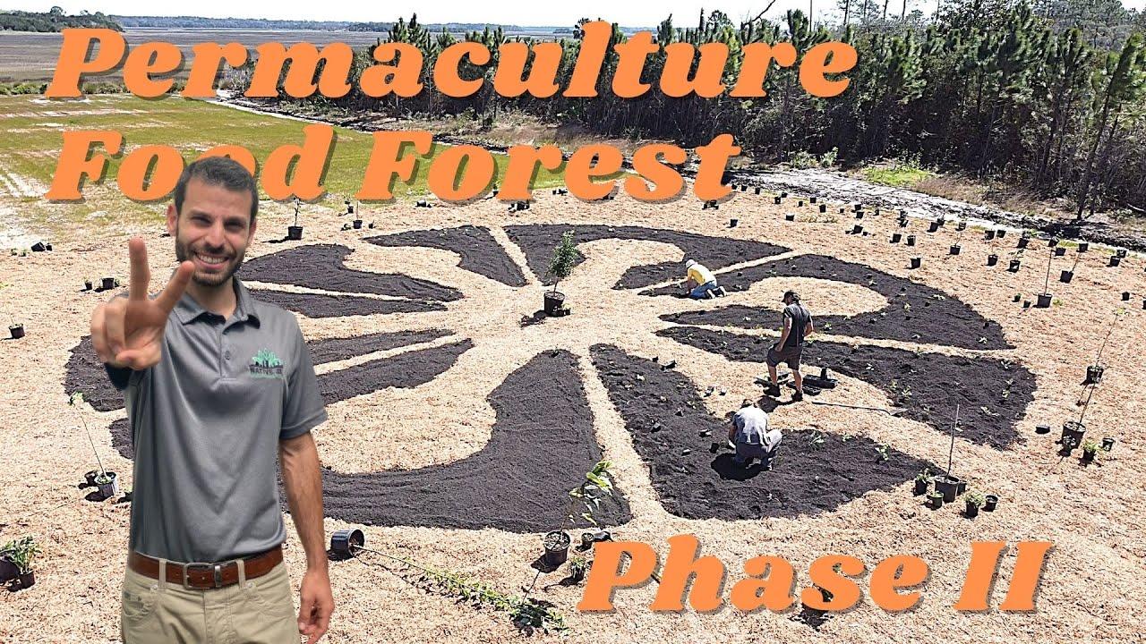 NativeJax - Episode 2 Mandala Food Forest Installation!
