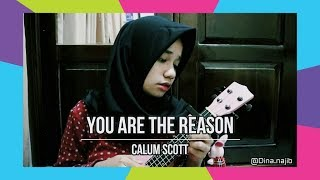 You are the Reason Calum Scott UKULELE COVER