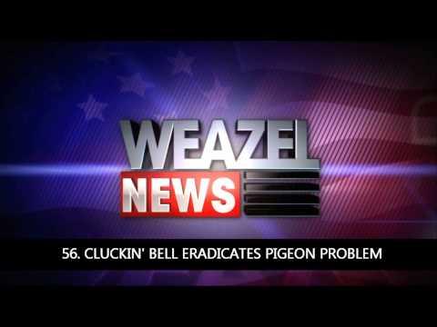 101 GTA IV Weazel News Reports