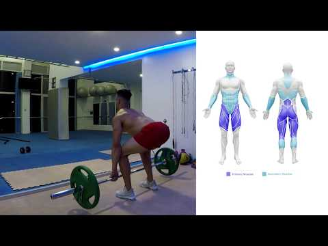 deadlift-|-how-to-do-a-deadlift,-benefits-&-muscles-worked