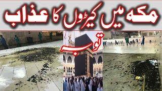 Haram Shareef Me Machron ka Hamla || New News About Makkah ||AF Studio