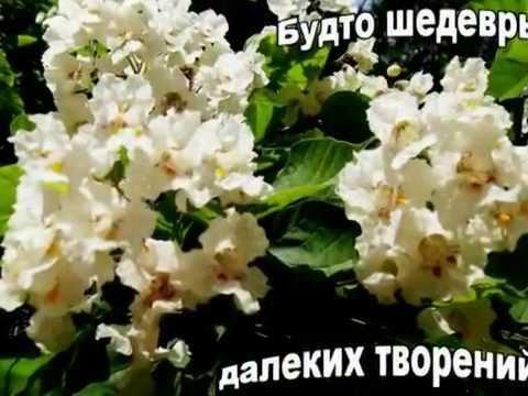 Крымское досье