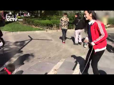 Beauty walks an ostrich in downtown Beijing!