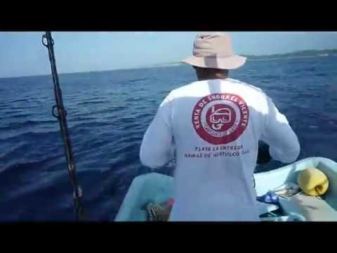 Deep Sea Fishing Huatulco Mexico - Marlin Catch