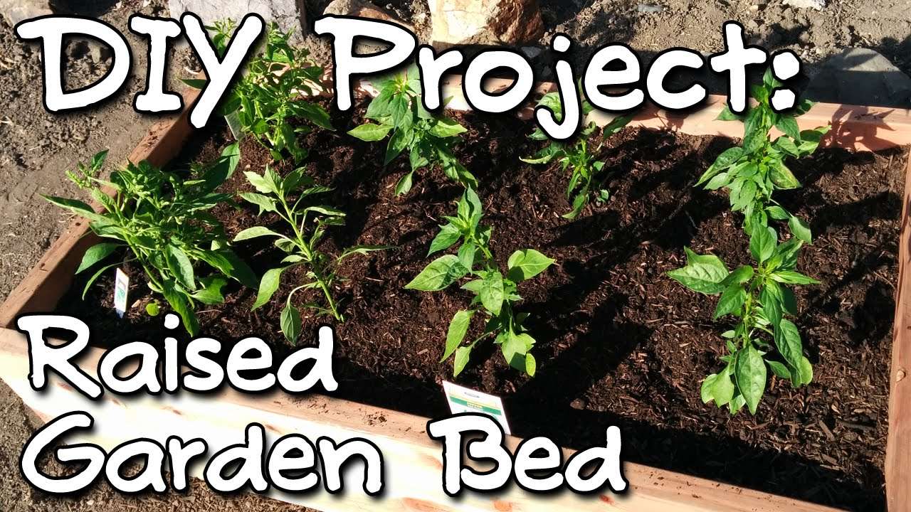 how to make a raised garden bed youtube