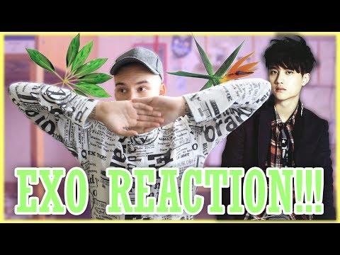 ГОВОРЮ О EXO И РЕАГИРУЮ! // Call Me Baby, Overdose, Love Me Right | Женя Симпсон
