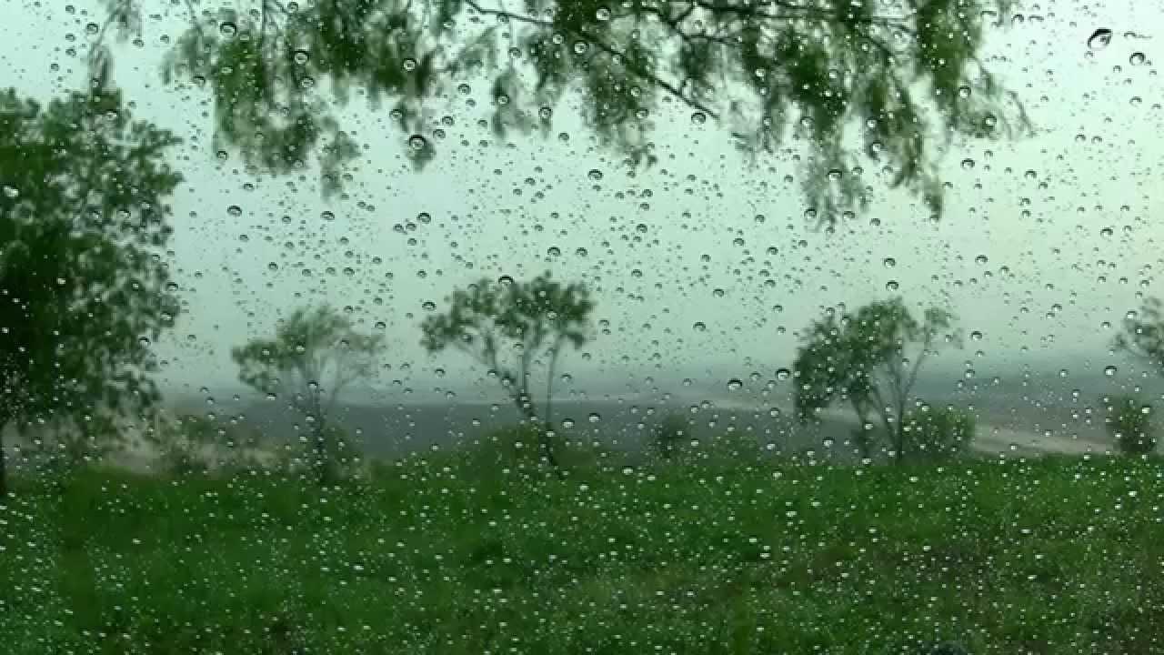 Прогноз погоды на 3 июня: на юге и юго-востоке пройдут сильные дожди