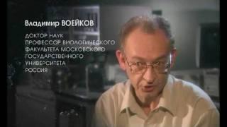 010 Владимир Воейков  Мы о воде ничего не знаем  Из фильма Вода