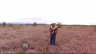 Reportajes de Alvarado - Cadereyta Jiménez, Nuevo León