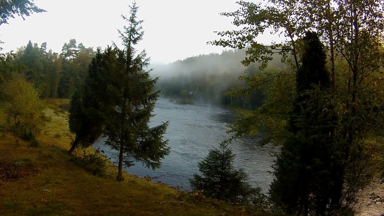 The quest for the big sea trout. Fly fishing for big se ...