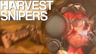TF2 Harvest Snipers (CaviGameplay)