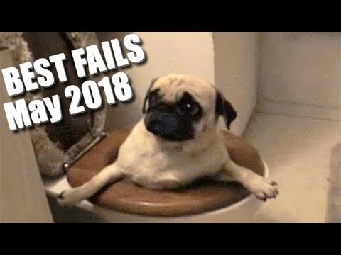 BEST FAILS! Epic Fails   You'll LAUGH all day long!   MAY 2018 Edition
