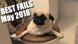 BEST FAILS! Epic Fails | You'll LAUGH all day long! | MAY 2018 Edition