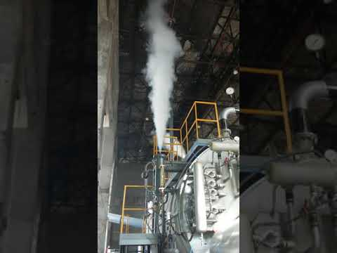 Steam Boiler for Eurasia Stick Company