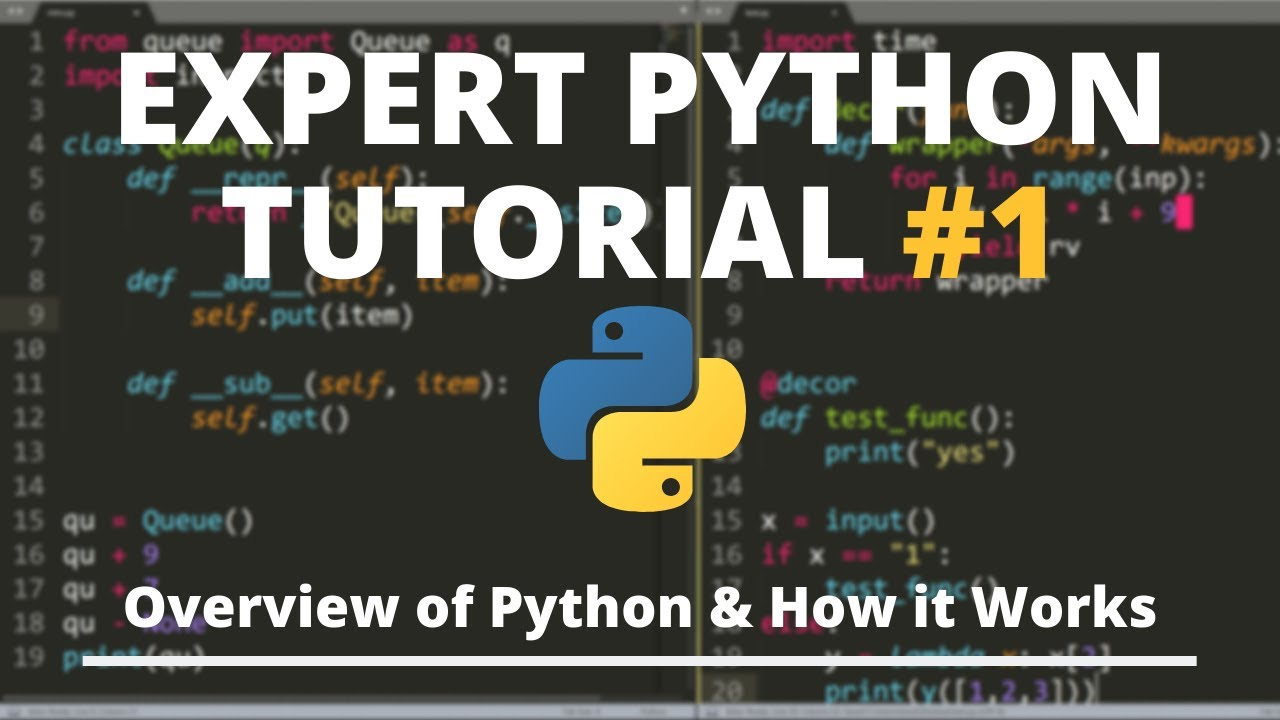 Overview of Python & How it Works