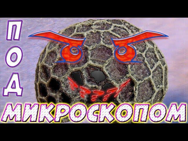 29 дек 2017. Объявление о продаже микроскоп для школьника в москве на avito.