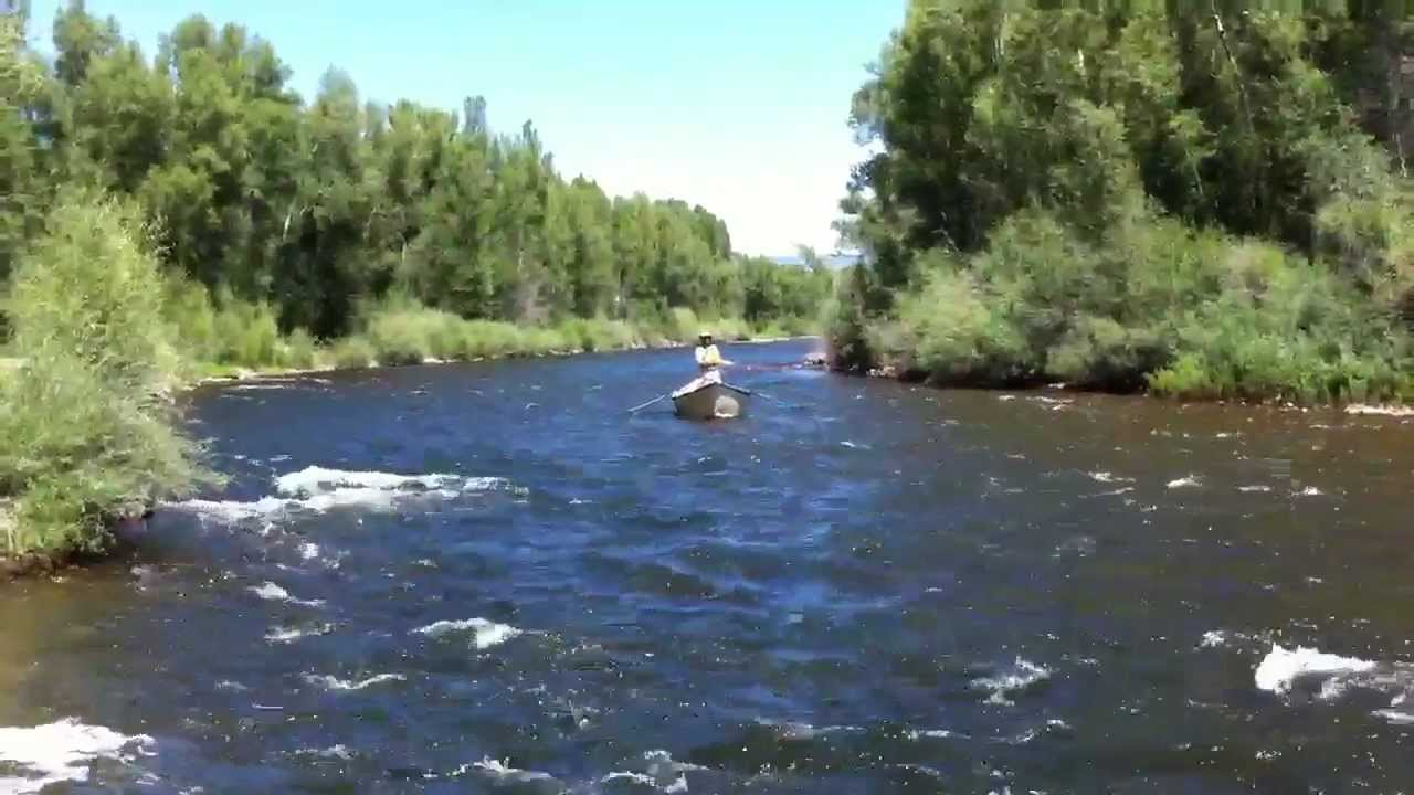 Gunnison river fly fishing myriverguide com youtube for Gunnison river fly fishing