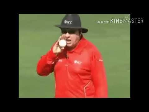 Yo Yo Gujarati Dhoni Vs ampire