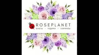 Доставка цветов Москва и МО 24 Розы в коробке roseplanet.ru(, 2017-12-19T06:39:14.000Z)