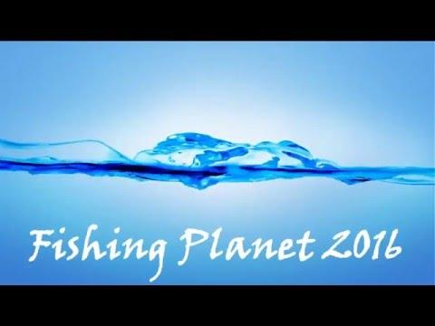 fishing planet калифорния ловля лосося