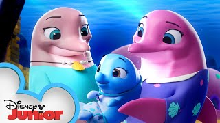 Pip And Freddy's Ocean Adventure 🌊 | T.O.T.S. | Disney Junior