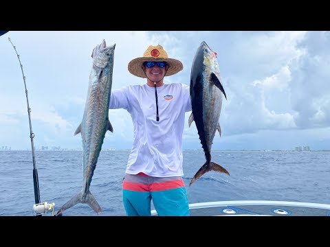 Deep Sea Kingfish And Tuna- Catch N Cook (Ft. Lauderdale Fishing)