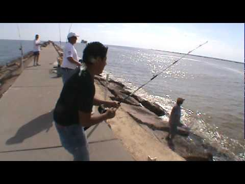 Fishing with eddy in freeport youtube for Freeport fishing report