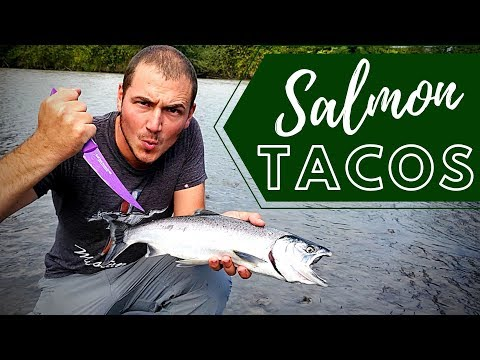 Coho Salmon Catch & Cook At The River!!! | 4K | Salmon Tacos!