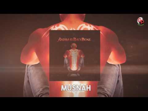 ANDRA AND THE BACKBONE   Musnah [LIRIK]