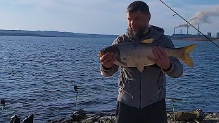 Рыбалка Поймал Толстолоба и Отпустил Реакция Окружающих Рыбаков