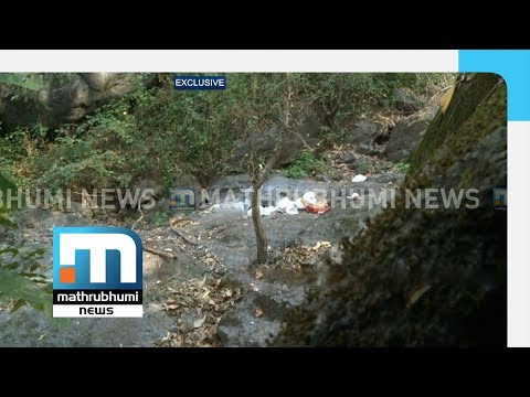 Exclusive: Visuals From Cave Where Madhu Lived| Mathrubhumi News
