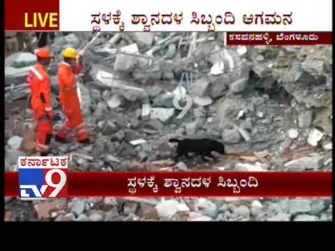 Construction Building Collapse in Bengaluru: Dog Quad Called to Search for the Missing Persons