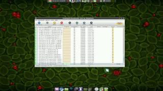 FreeRapid - Rapidshare Downloader - Linux Mint 7