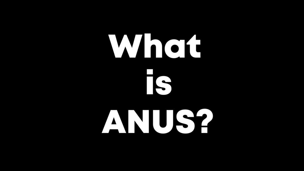 The glodbal anus