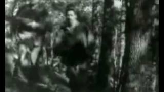 أجمل أغاني الثورة الجزائرية --- الجزائر