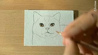 Как нарисовать кошку , рисуем портрет , кот , урок рисования cat