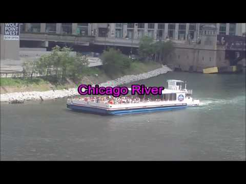 CTA Pink Line train from Cicero Avenue to Washington/Wells station 2 (05-30-16)