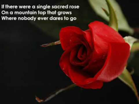 sami yusuf-anything for you (with lyrics)