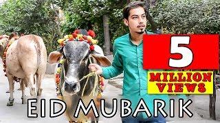 Bakra Eid Mubarik ( cow Qurbani ) By Peshori Vines Official