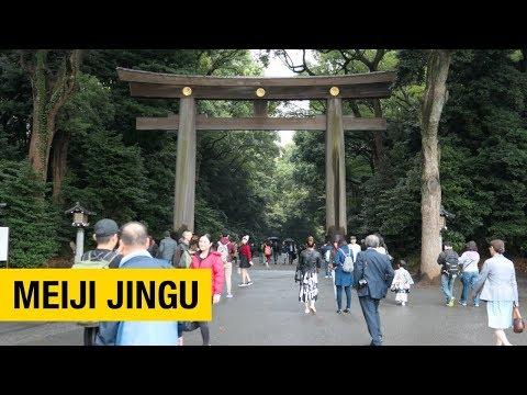 Meiji Jingu: A Shinto Shrine Surrounded by Forest