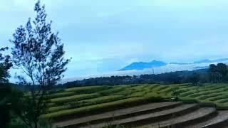 Download Video Cikaopark    Museum Diorama Nusantara Purwakarta    Karyawisata Kelas 5 SD Plus Nurul Aulia Cimahi MP3 3GP MP4