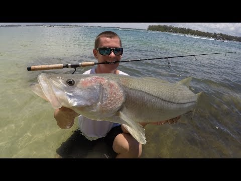 YOU Will NEVER Believe What It Took To Land This GIANT! (Anna Maria Island Snook Fishing)