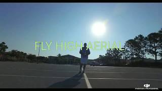 Fly high aerial(drone videos) coconut ...