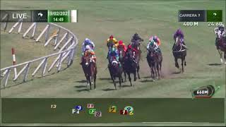 Vidéo de la course PMU PREMIO GUAPO Y BARON