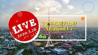 TV 우즈베키스탄 Live 20200328 | 국제결혼…
