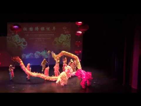 Guangdong new year show