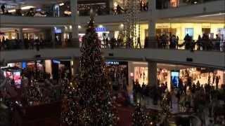 TravelVLOG:Путешествие✈️в Куала-Лумпур(Малайзия)✈️♥День 2(26.12.2014г)♥VLOG