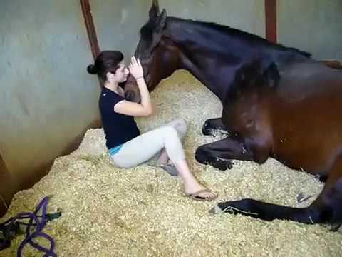 بنت مع حصان