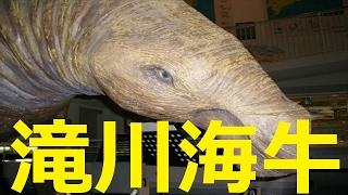 【北海道観光】滝川海牛=北海道の絶景
